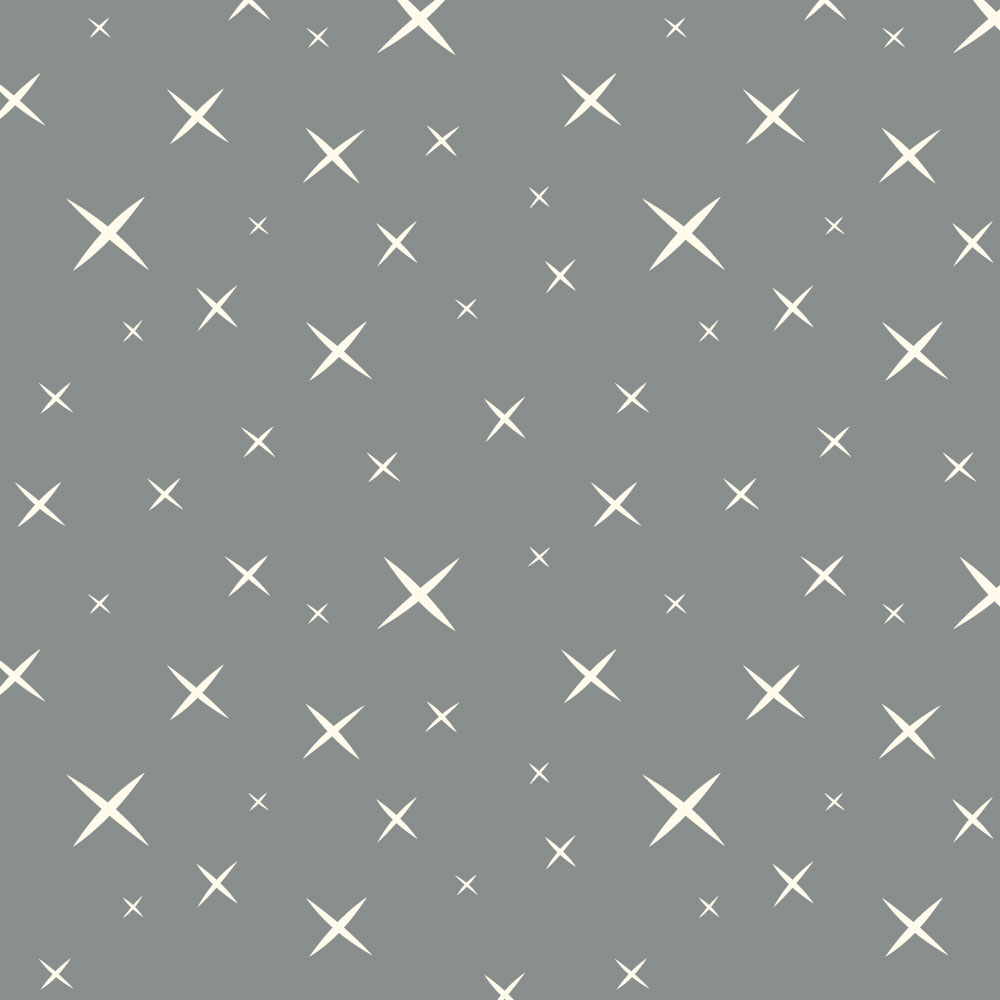 Hoshi Grey 112″ Wide Back Poplin