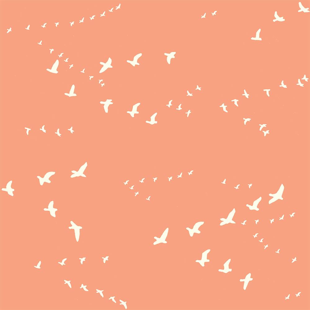 FLIGHT in PEACHY