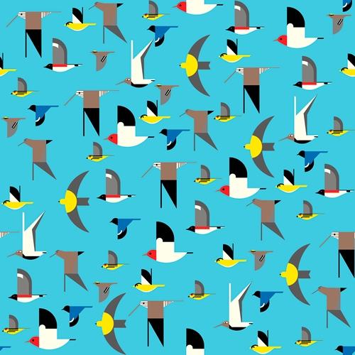 MARITIME BIRDS MULTI CANVAS
