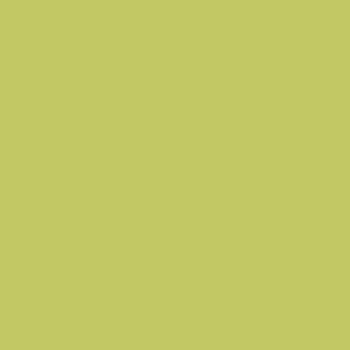 Grass Solid Poplin