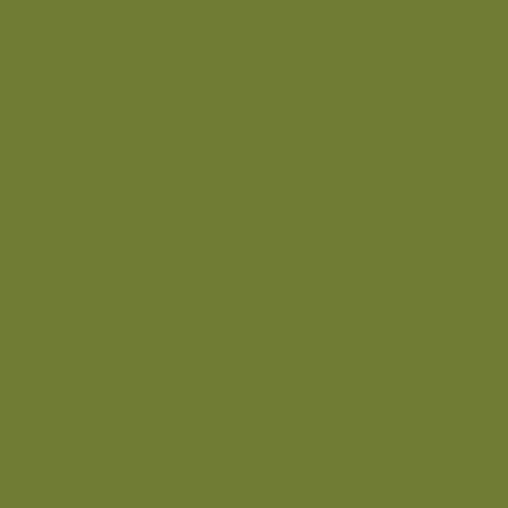 Moss Solid Poplin